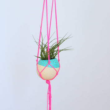 Neon Macrame Air Plant Hanging Planter with Tillandsia in Pod Planter - Neon Pink, Aqua, Gold