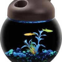KollerCraft Aquarius GloFish Globe Bowl Aquarium with LED Lighting, 1-Gallon