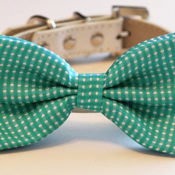 Blue Dog Bow Tie, Something blue, Pet wedding, Blue Polka dots weddings