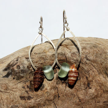 Hawaiian Small Aqua Blue Teal Beach Glass with Gorgeous Tidal Snail Shells on Hammered 925 Sterling Silver Teardrop Wire Small Hoop Earrings