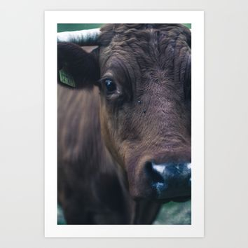 Cow Art Print by Mixed Imagery