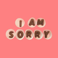 I Am Sorry Large Milk Chocolate Letters Great Cool Apology Gift for Woman Man Made to Order