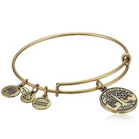 Alex and Ani Women's Tree of Life Charm Bangle Rafaelian Expandable Adjustment Gold Bracelet, Women Accessories Gift
