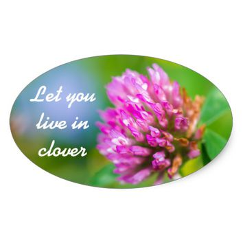 Pink clover flower oval sticker