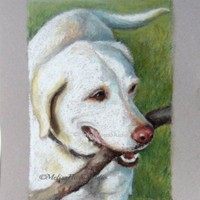 "Custom Pet Portrait - Pastel Drawing 8"" x 10"" - For Pet Lovers, Personal Gift"