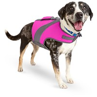 Good2Go Pink Dog Flotation Vest, XX-Small | Petco Store