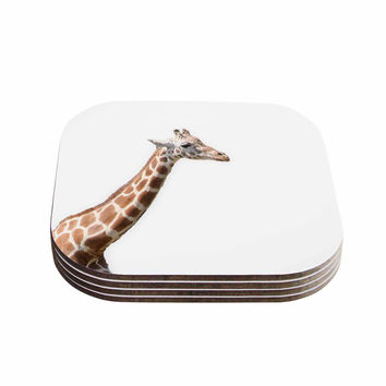 "Sylvia Coomes ""Giraffe"" Animals Photography Coasters (Set of 4)"