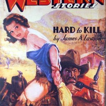 """Pulp Fiction Novel Exploitation Art Poster spicy western storyes 16""""x24"""""""