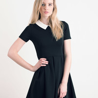 Black Contrast Collar Skater Dress