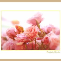 Rose Floral Photography Pink,flower,Gifts under 25,home decor,macro,baby nursery artwork,soft pink,romantic bouquet,dreamy,blush roses,