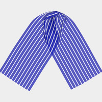 Royal Blue and White Horizontal Stripes Scarf