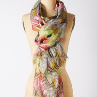 Sun-Dipped Scarf by Anthropologie Yellow One Size Scarves