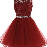 Short Beaded Prom Dress Tulle Applique Homecoming Dress