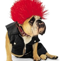 Zelda Punk Rocker Pet Costume – Spirit Halloween
