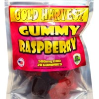 Gold Harvest CBD Gummy Raspberry. 20 Count / 500mg total