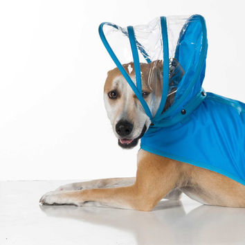 Dog Raincoat - Light Blue - Rainbow Line