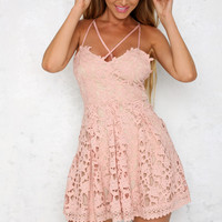 Later Skater Dress Blush