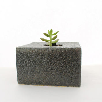 Black Lava Cube Planter