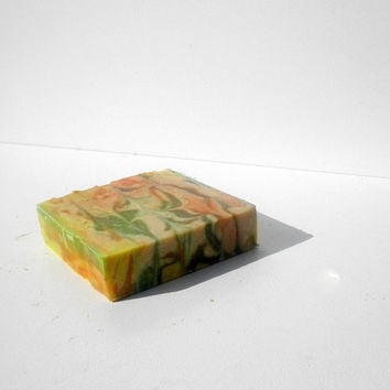 Moisturizing Natural Soap , Cold Process Antiseptic Soap . Against Wrinkles Soap . Natural Olive Soap . Organic Soap . Nourishing Soap