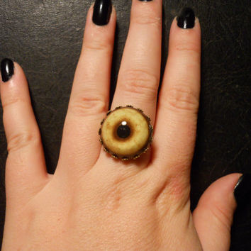 Bronze Coyote Eye Taxidermy Glass Eye Ring by TheCuriositeer