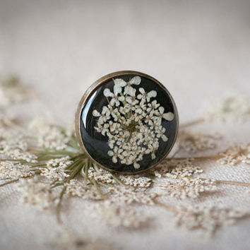 Queen anne's flowers, Adjustable ring, pressed flower by the resin, exquisite jewelry