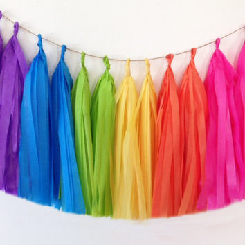 Tissue tassel garland double rainbow tissue paper tassel // wedding // shower // reception // birthday