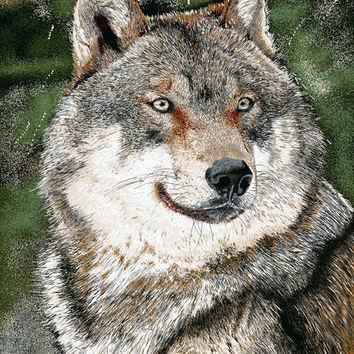 Wolf 839 60x80 Twin Blanket - Free Shipping in the Continental US!