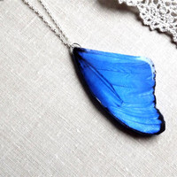 Blue butterfly wing necklace, Winter jewelry, Butterfly wing necklace, Butterfly wing, Butterfly jewelry, Free Shipping Worldwide,