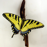 Tiger Swallowtail Butterfly Wall Hanging Sculpture Hand Carved Wood Carving