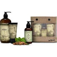 WEN By Chaz Dean Healthy Hair Care System - Swee by WEN by Chaz Dean