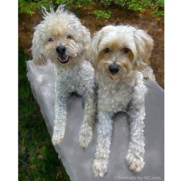 Two Golden Doodle Dogs  667