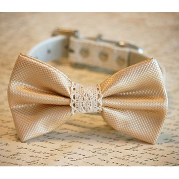 Cream Wedding dog Collar, Dog Bow tie, Dog lovers, bow with Lace
