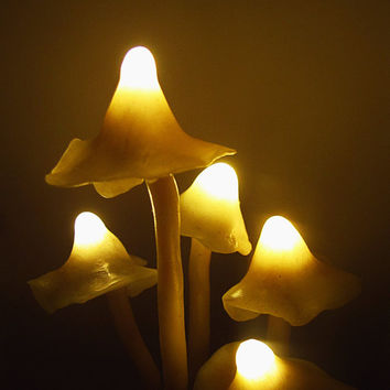 Mushrooms Night Light - Mashroom lamp - Polymer Clay Fungi - moss and succulent - fairy decor - LED