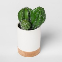 Faux Cactus Plant in White Pot Small - Project 62™