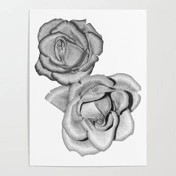 Grey Roses Poster by drawingsbylam