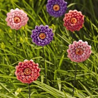 Zinnia Bouquet Stakes, Set of 6