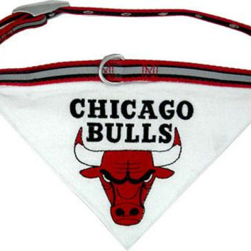 Chicago Bulls Bandana Collar Small