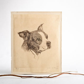 Vintage dog pen and ink drawing signed – original dog portrait – Boston terrier drawing