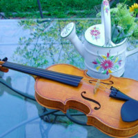 Custom Crafted Handmade Violin