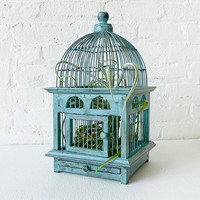Blue Distressed Teak Bird Cage Air Plant Garden by EarthSeaWarrior