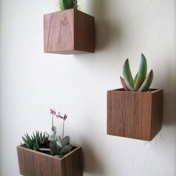 "Wall Planter, Plant Holder, Succulent Holder, made from reclaimed CHERRY wood, SMALL square shape (roughly 3""), plant not included"