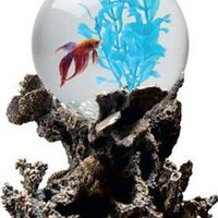Aquarius OT1001 Betta Treasures 1-Gallon Coral Aquarium