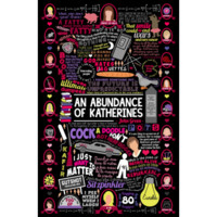 DFTBA Records :: Abundance of Katherines Collage Poster