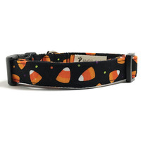 Dog Collar - Halloween Collar - Halloween Candy Dog - Candy Corn Collar - Food Dog Collar - Cute Dog Collar - Halloween Dog