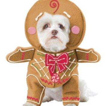 Gingerbread Pup Dog Costume