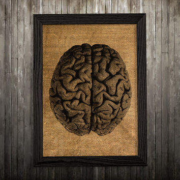 Anatomy print Biology art Brain poster Medical print BLP546