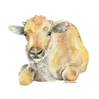 Buffalo Calf Watercolor Painting 8 x 10 - 8.5 x 11 Fine Art Giclee Reproduction Nursery Art  Baby Animals