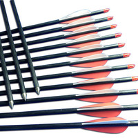"12 Carbon Practice Arrows With Screw-In Tip 28""~32"" For Archery Long&Recurve Bows"