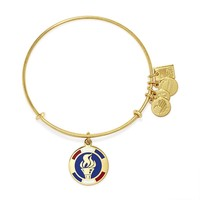 Team USA Flame Charm Bangle