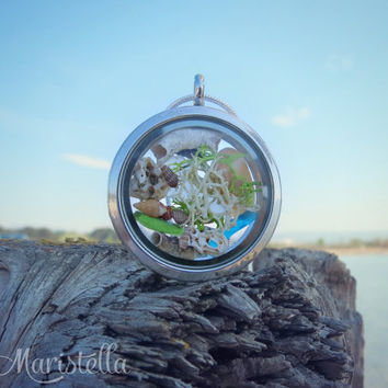 REAL Sea glass, REAL SeaSHELLS, Real moss and Real corals in a 30 mm two sided glass necklace.CLOSED locket with sterling silver snake chain